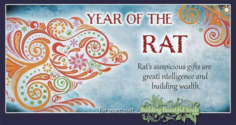 chinese zodiac rat year   rat chinese zodiac