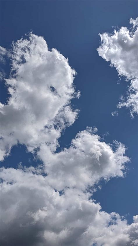 white crisp clouds in patches along a blue sky