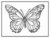 Butterfly Coloring Pages Butterflies Colouring Printable Sheets Printables Buterfly Detailed Flowers Flower Templates Sheet Butterflys Drawing Colors Template Adult Coloringpages sketch template