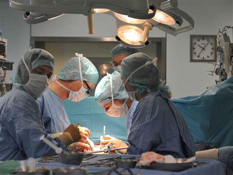 scientific breakthrough  organ donation business insider