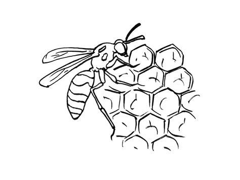 coloriage abeilles les beaux dessins de nature