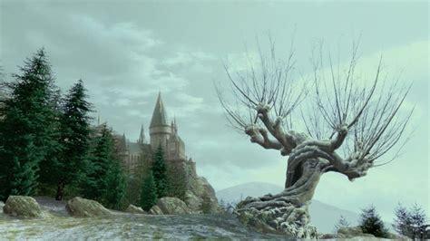 magical mondays  magical education  lacking lady