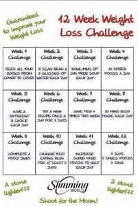 Scan bran challenge day 1 - 100 to lose Scan Diet