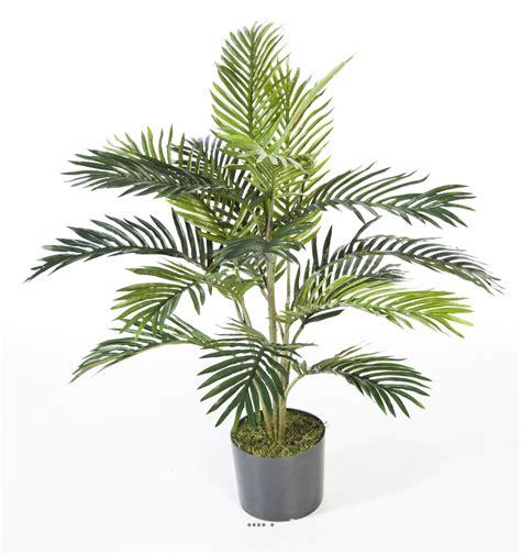 palmier en pot pour balcon palmier en pot 28 images palmier areca en pot 216 11 5 cm h 50 cm mica jardinerie truffaut
