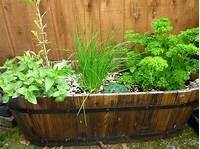potted herb garden 5 Herb Garden Design Ideas We Love