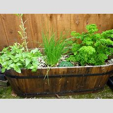 5 Herb Garden Design Ideas We Love