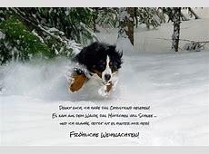 Humorvolle Weihnachtsgrüße Passende Sprüche, Motive und Ideen