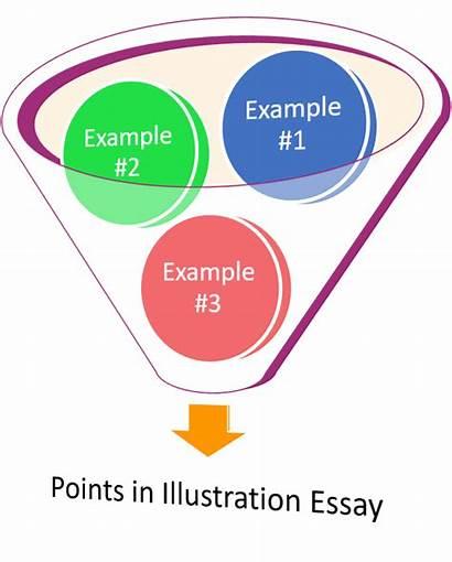 Essay Illustration Owl College Rhetorical Diagram Excelsior