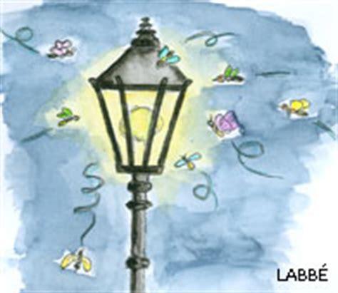 Warum Fliegen Insekten Ins Licht by Warum Fliegen Insekten Immer Zum Licht