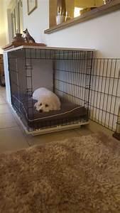 Niche Interieur Pour Chien : niche d int rieur pour chiens fido studio chiens omlet ~ Melissatoandfro.com Idées de Décoration