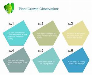 Plant Growth Observation Chart Examples And Templates
