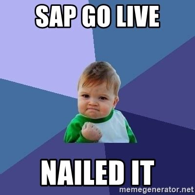 Sap Meme - sap go live related keywords sap go live long tail keywords keywordsking