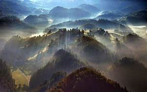 Nature, Landscape, Mist, Forest, Trees, Morning, Sunbeams, Sunrise, Aerial, View, Villages
