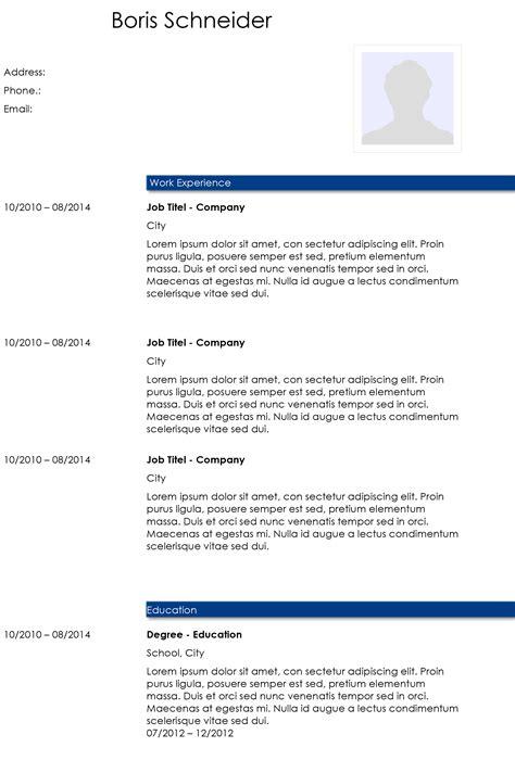 academic cv template   word template