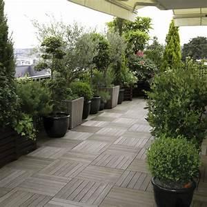 Arbre En Pot : arbre en pot pour terrasse ~ Premium-room.com Idées de Décoration