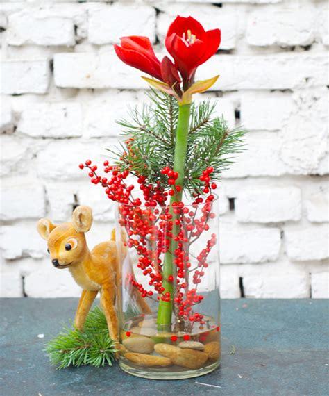 amaryllis blüht nicht ein winterstrauss mit amaryllis und fr 246 hliche weihnachtsgr 252 223 e