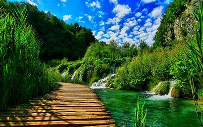 Landscape Nature Wallpapers Bridge Wooden Pontoon Wallpapers13