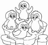 Penguin Coloring Pages Baby Printable Cute sketch template