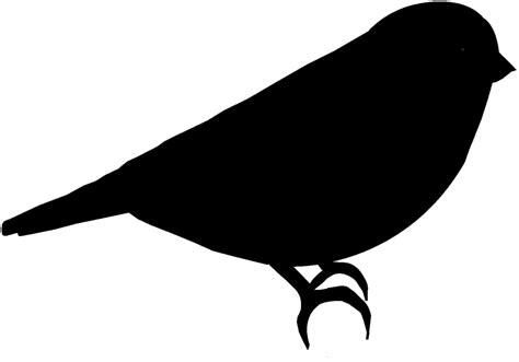 Cute Birds Silhouette Clipart - Clipart Suggest