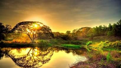 4k Ultra Nature Landscape Sunset Trees Pond
