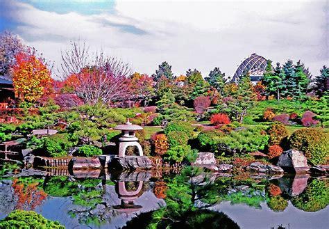 denver botanic gardens denver botanical gardens 4 photograph by steve ohlsen