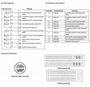 Kia Sportage  Underdrive Brake Control Solenoid Valve Ud  B Vfs   Schematic Diagrams
