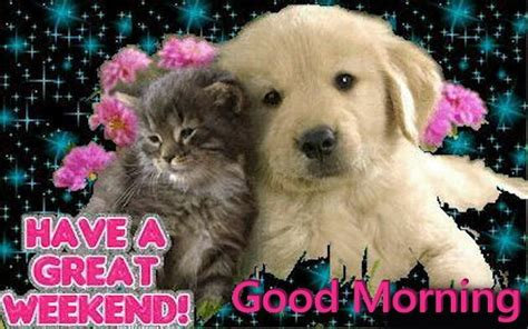 Cute Have A Great Weekend Quote Pictures, Photos, And