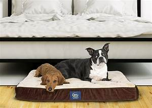 large dog cage and serta dog bed for sale in cumberland With big dog beds for sale