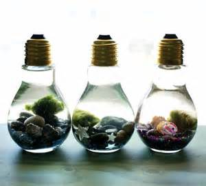 Terrarium Lamps by Easy Diy Light Bulb Aquarium