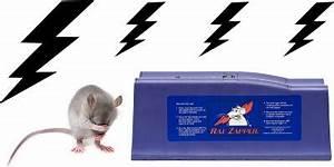 Produit Pour Tuer Les Souris : tuer les rats et souris pl tre farine bicarbonate rats et souris pour en finir ~ Melissatoandfro.com Idées de Décoration