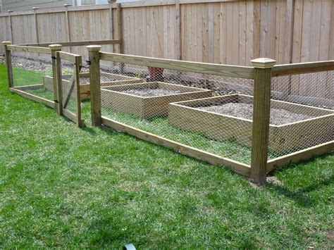 20 Things To Know About Vegetable Garden Fence Chicken