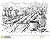 Plantation Coffee Vector Illustration Landscape Table Cup Broken Clipart Clip Field Illustrations Sack Graphic Drawn Vectors Dreamstime Similar sketch template