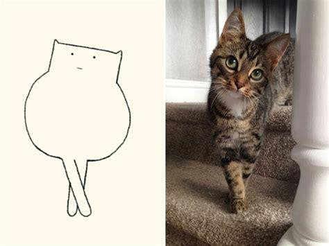 accurate cat drawings barnorama