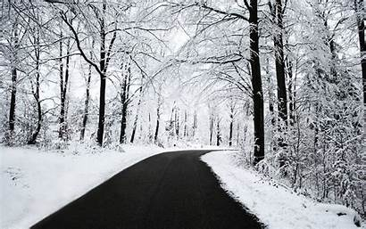 Snow Winter Backgrounds Background Wallpapers Snowy Snowfall