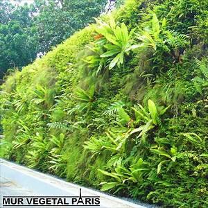 Mur Vegetal Exterieur : cr ation de mur v g tal ext rieur mur v g tal ~ Melissatoandfro.com Idées de Décoration