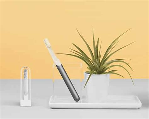 quip toothbrush electric subscription vs sonicare care head brush oral goby holder replacement battery delivered simple better healthy refills suction