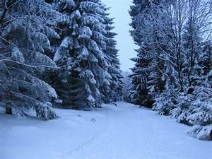 Datei:Falk Oberdorf Wiehengebirge Winter Heidbrink.JPG ...