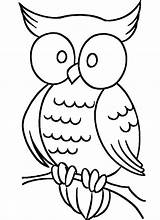 Coloring Owl Pages Simple Animal Drawing Cute Owls Printable Cartoon Easy Farm Eyes Patterns Elf Books Colouring Adult Pattern Clip sketch template