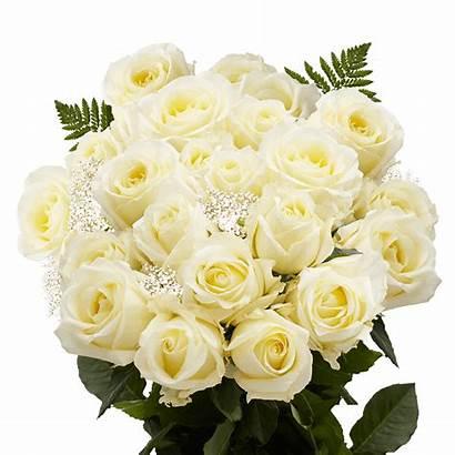 Roses Ivory Dozen Flowers Bouquet Flower Bouquets