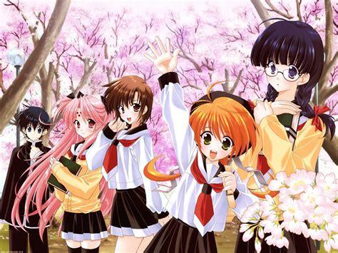 Harem Anime Wallpaper - what s your favorite harem anime poll results anime