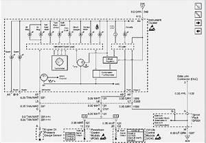 S10 Wiring Diagram  U2013 Moesappaloosas Com
