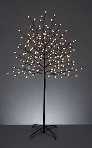 Light, Branch, Floor, Tree