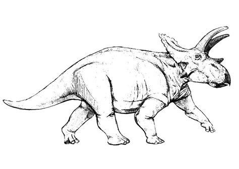 Kleurplaat Grote Dinosaurus by Kleurplaat Anchiceratops Dinosaurus Afb 9148