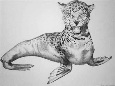 animalmetamorphosis art class high school pinterest