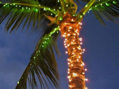 palm tree lights unique outdoor decorations garden ideas