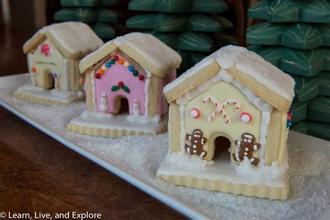 mini winter gingerbread housesthough