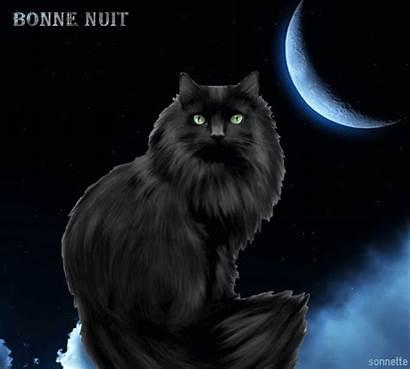 Centerblog Sonnette Nuit Chats Gatos Bonne Bonsoir