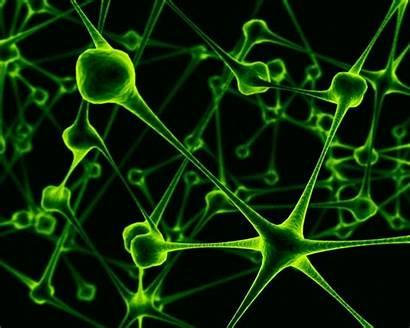 Virus Viruses Particles Killed Deviantart Nano Wallpapers