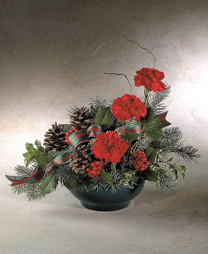 traditional christmas flowers flickr photo sharing
