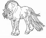 Gypsy Horse Drum Lines Deviantart Coloring Pages Vanner Drawings Adults sketch template